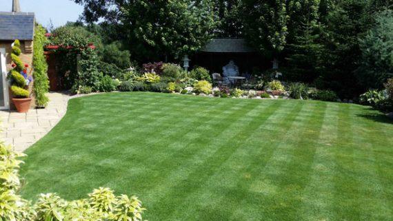 Landscaping - Garden Maintenance